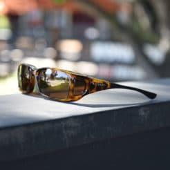 tortoiseshell Cocoons fitover sunglasses
